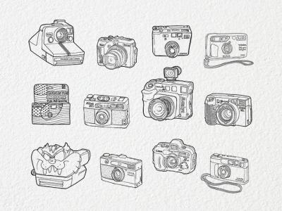cameras-dislay